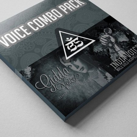 voice-combo-pic